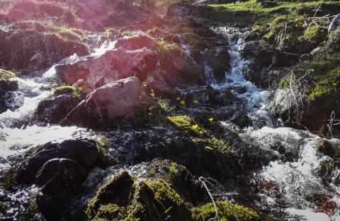 rauschendes Wasser am wilden Kasier