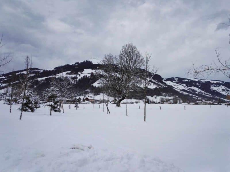 Schneelandschaft im Advent in Westendorf Tirol