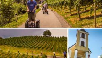 Segway Fahrer in den Weingaerten